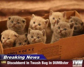 Breaking News - Discubberd in Twash Bag in DUMBster