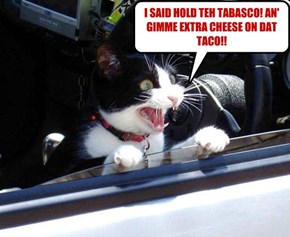 I SAID HOLD TEH TABASCO! AN' GIMME EXTRA CHEESE ON DAT TACO!!