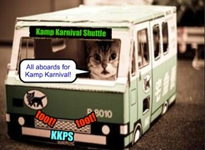 Wiff all teh fun aktibities arownd teh Pool area, like Stewie's Kittie Komet ride an' teh Safety Net Jump, Kampers habs started calling all dat teh Kamp Karnival.. An' now dare's a convenients Shuttle Bus to go dare!