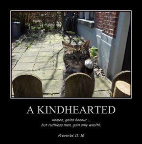A KINDHEARTED