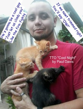 """Cool Guy"" (TTO ""Cool Night"" by Paul Davis)"