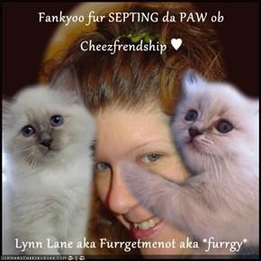 Fankyoo fur SEPTING da PAW ob Cheezfrendship ♥  Lynn Lane aka Furrgetmenot aka *furrgy*