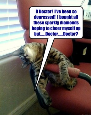 Why cats shouldn't be Psychiatrists!