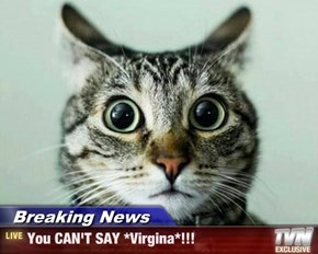 Breaking News - You CAN'T SAY *Virgina*!!!