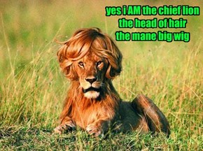 He Does The Lion's Share of Hair In These Parts