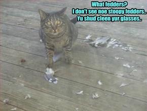 All kitties iz bery good at denial..