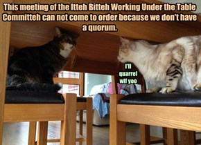 This meeting of the Itteh Bitteh Working Under the Table Committeh can not come to order because we don't have a quorum.