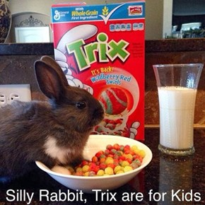 There's a Hare in My Cereal