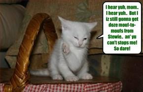 A defiant kitteh!!