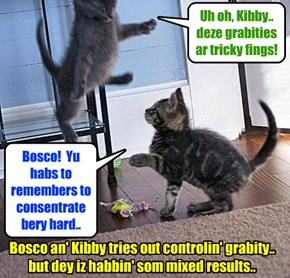 At Kamp, after Madame Esmeralda gabe dem som tips on controllin' grabities, Bosco an' Kibby went to dare Kabin an' tried out a few ob her advices..