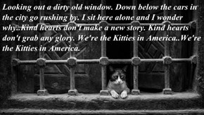 Looking out a dirty old window. Down below the cars in the city go rushing by. I sit here alone and I wonder why..Kind hearts don't make a new story. Kind hearts don't grab any glory. We're the Kitties in America..We're the Kitties in America.