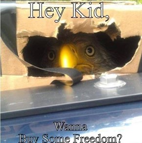 Freedom Ain't Free Though, So Pay Up!