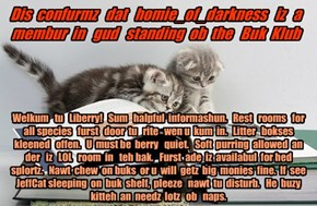 Offishul JeffCatsBookClub Memburship Kard for homie_of_darkness