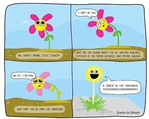 Let Life Flower