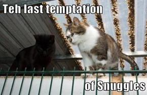 Teh last temptation   of Snuggles