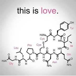 Love, It's a Chemical