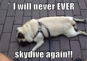 I will never EVER  skydive again!!