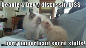 Beanie & Dewy discussin BISS  ...berry importnant secrit stuffs!