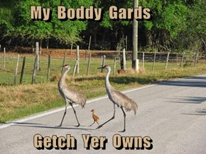 My  Boddy  Gards           Getch  Yer  Owns