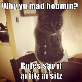 Why yu mad hoomin?  Rules say if                   ai fitz ai sitz