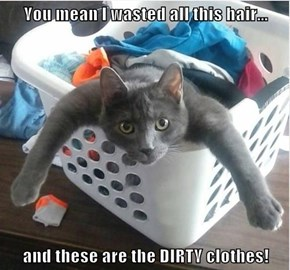 You mean I wasted all this hair...  and these are the DIRTY clothes!