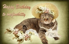 Happy Birthday to onefinekitty