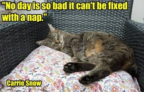 """No day is so bad it can't be fixed  with a nap."""