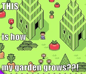 THIS is how my garden grows??!