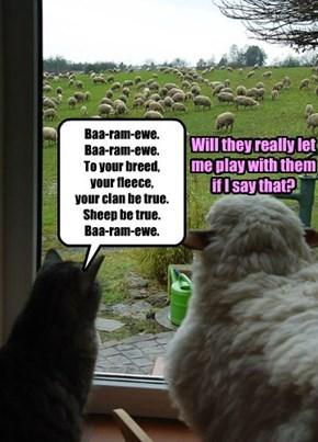 Baa-ram-ewe.  Baa-ram-ewe.  To your breed,  your fleece,  your clan be true. Sheep be true.  Baa-ram-ewe.