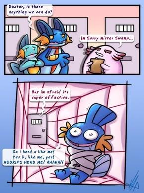 Poor Mudkip
