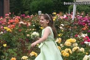 Donna Gray 2014