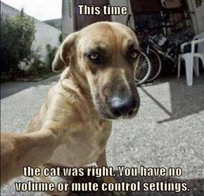 This time  the cat was right. You have no volume or mute control settings.