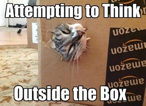 Attempting to Think Outside the Box