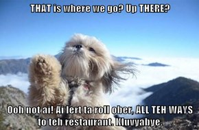 THAT is where we go? Up THERE?   Ooh not ai! Ai lert ta roll ober, ALL TEH WAYS to teh restaurant. Kluvyabye.