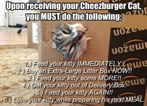 Cheezburgers recommended Diet