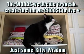 The WORDS we decide to speak.. create the life we CHOOSE to live ♥            Just  some  Kitty  Wisdom