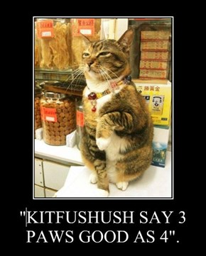 """KITFUSHUSH SAY 3 PAWS GOOD AS 4""."