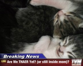 Breaking News - Are We THAER Yet? (or still inside mom)?