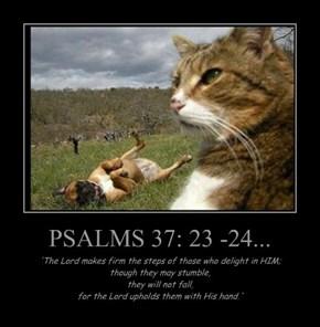 PSALMS 37: 23 -24...