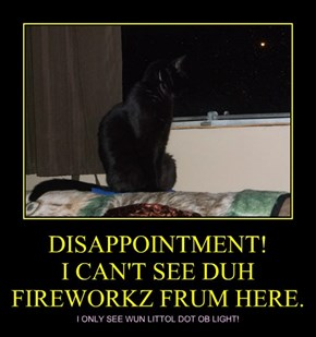 DISAPPOINTMENT!  I CAN'T SEE DUH FIREWORKZ FRUM HERE.