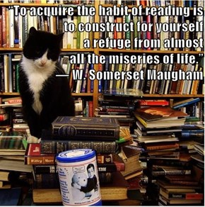 """To acquire the habit of reading is to construct for yourself                                                      a refuge from almost                                                                              all the miseries of life."""