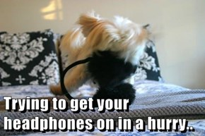 Trying to get your headphones on in a hurry..