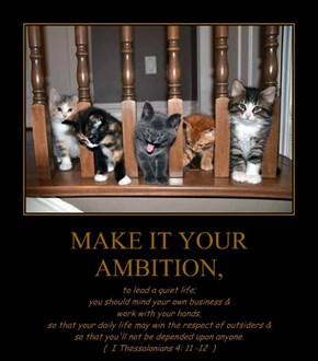MAKE IT YOUR AMBITION,