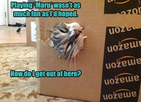 Playing *Maru* wasn't as much fun as I'd hoped.        How do I get out of here?