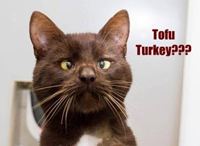 Tofu Turkey???