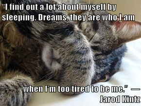"""I find out a lot about myself by sleeping. Dreams, they are who I am   when I'm too tired to be me.""  ― Jarod Kintz"