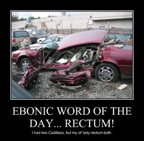 EBONIC WORD OF THE DAY... RECTUM!
