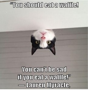 """You should eat a waffle!          You can't be sad                                                                         if you eat a waffle!""                                                           ― Lauren Myracle,"