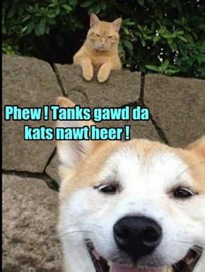 Phew ! Tanks gawd da kats nawt heer !