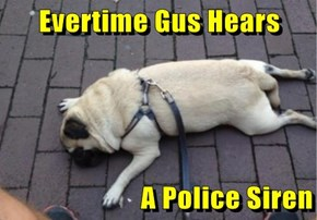Evertime Gus Hears   A Police Siren